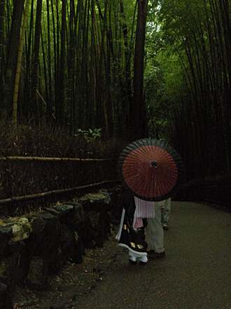 Geisha in Japan along Bamboo walk